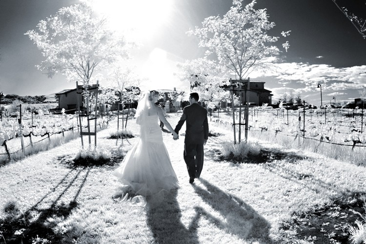 infrared-bride-groom-jacuzzi-vineyards