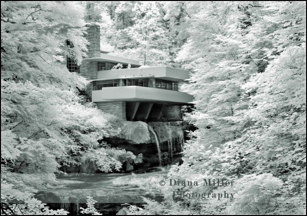 Sacramento portrait photography, sacramento black and white photography, pittsburgh portrait photography, frank lloyd wright, fallingwater, pennsylvania portrait photography, sacramento family photography, (9)